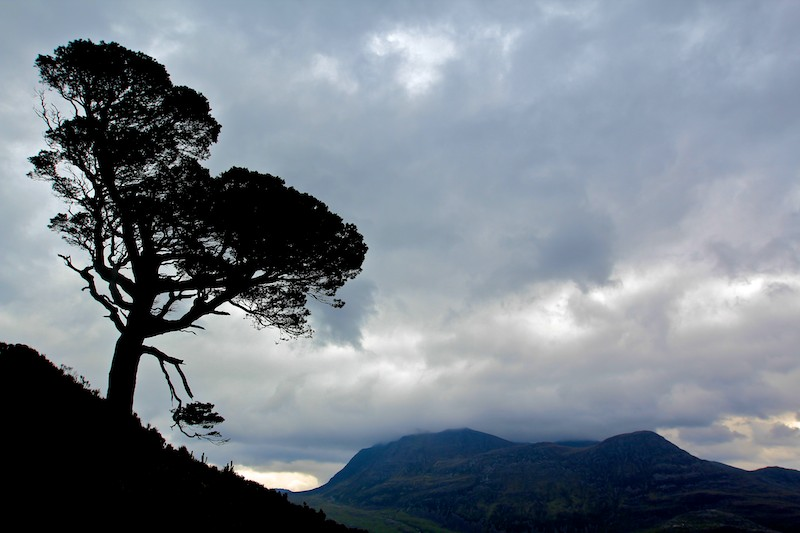 Wester Ross  037