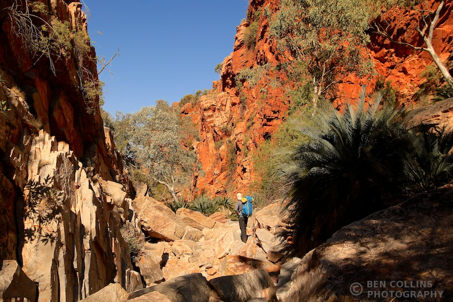 Trekking through the Inarlanga Pass, Larapinta Trail, Australia