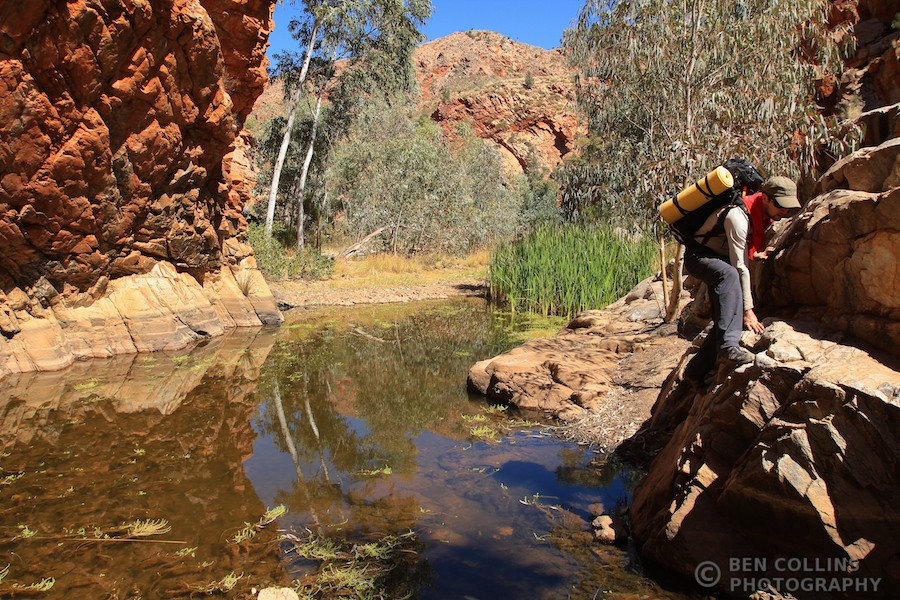 Trekking through Hugh Gorge, Larapinta Trail, Australia