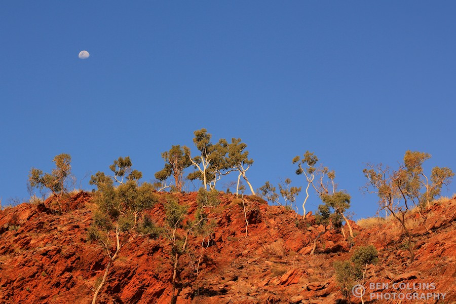 Moonrise at Fringe Lily Creek camp, Larapinta Trail, Australia