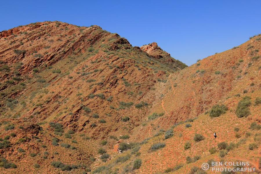 Traversing through the Chewings Range, Larapinta Trail, Australia