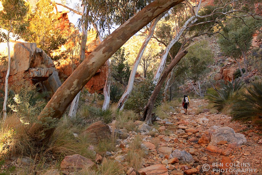 Approaching Standley Chasm camp, Larapinta Trail, Australia