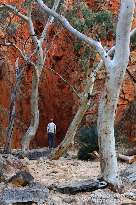 Entering Standley Chasm