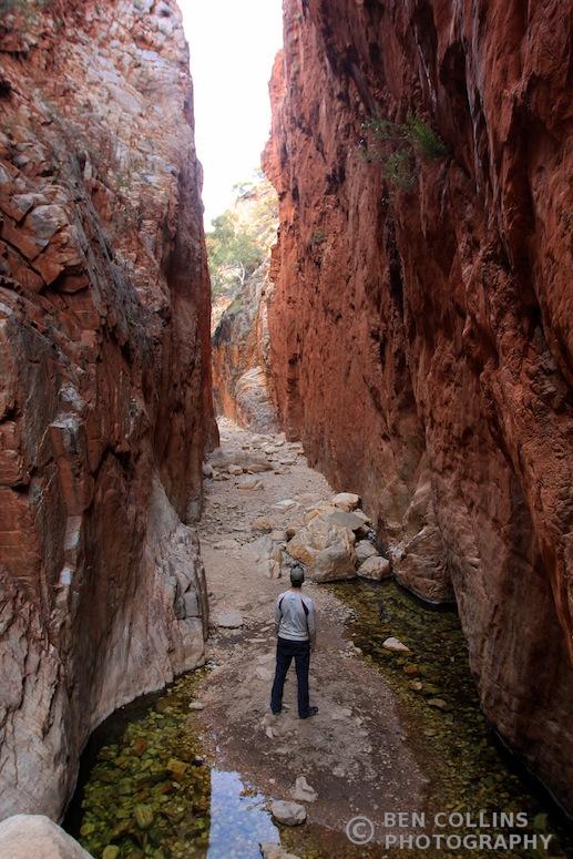 Standley Chasm, West MacDonnell Range, Australia