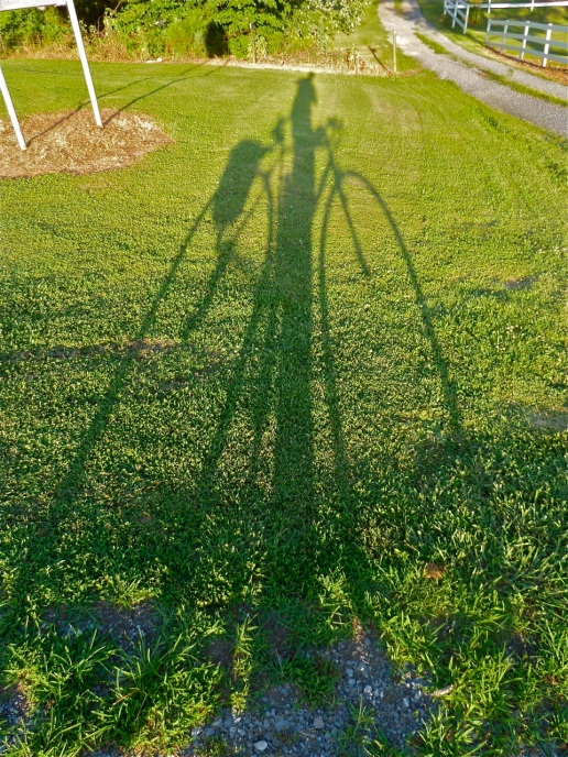 Bike tour 004
