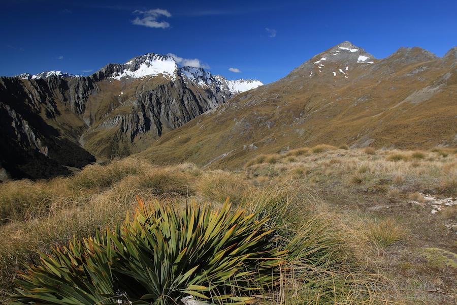 Black Peak is the pyramidal summit on the R side of skyline