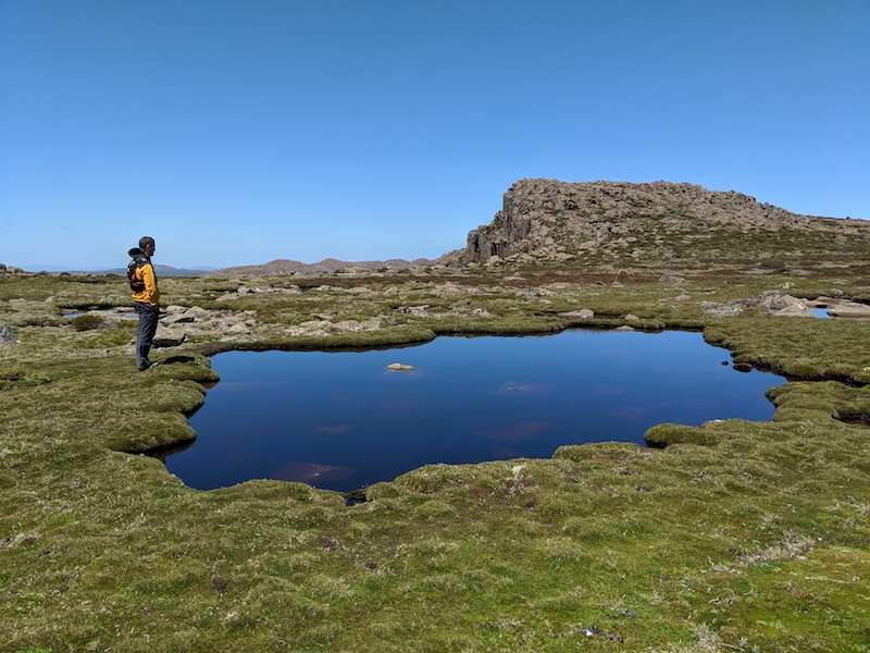 Tarn near summit of Mt Field West